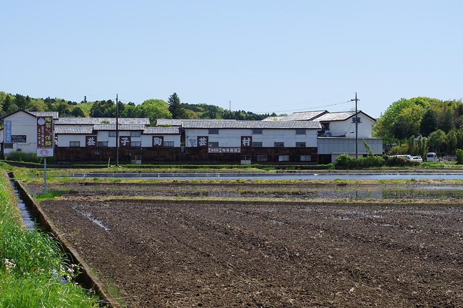 益子の田園風景
