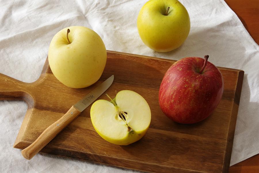 青森 冬のりんご農園