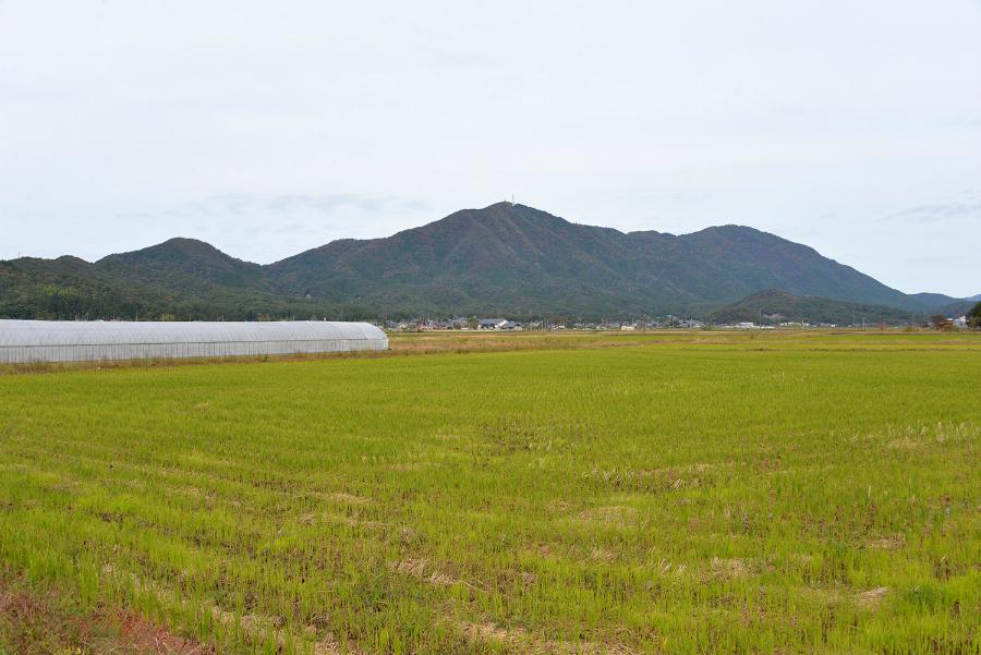 越後平野の米問屋